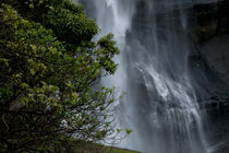Water fall 2 by Hemantha Arunasiri