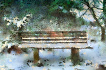 Wooden bench in the Forest by Gina Koch