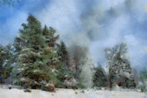 Winter Landscape by Gina Koch