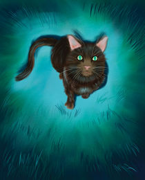 Blue Moon Cat by Barry Weatherall