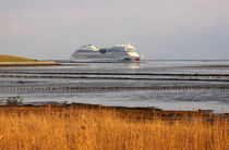 Kreuzfahrtschiff - cruise ship von ropo13