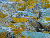 Colourful rocks by Inez Wijker