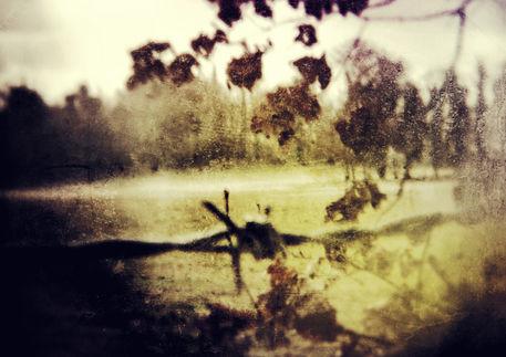 Forbiddenmemory-c-sybillesterk