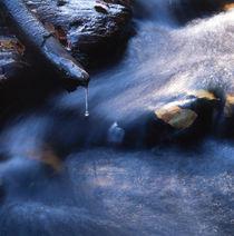 Autumn river von Intensivelight Panorama-Edition