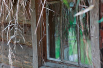 Window of a log house with grass roof by Intensivelight Panorama-Edition