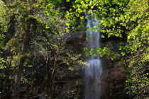 Waterfall in spring von Intensivelight Panorama-Edition