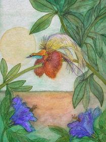 Paradiesvogelpefin
