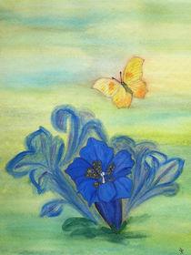 Sommertraum ( Butterfly and gentian) von Dagmar Laimgruber