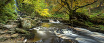 Mallyan Spout and West Beck von Martin Williams