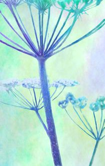 hogweed by paulapanther