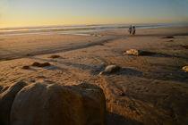 beach walk by dayle ann  clavin