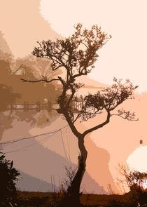Tree von Iain Clark