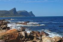 Cape Point  by Herman Stadler