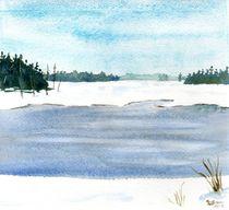 Winter Pond von Sandy McDermott