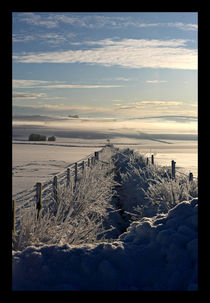Still Life - Frozen Scotland von Liz Alderdice