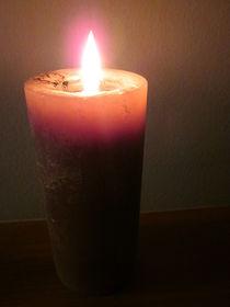 Light A Darkened World by Guy  Ricketts