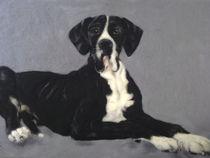 Wollbild Manteldogge von Birgit Albert