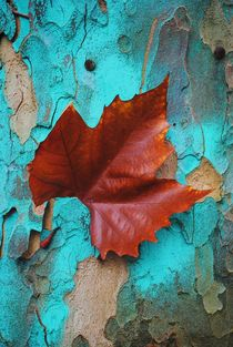 Autumn Leaf von CHRISTINE LAKE
