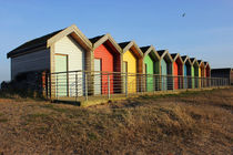 Blyth Beach Huts and bird by Dan Davidson