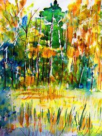 Herbstlandschaft by Irina Usova