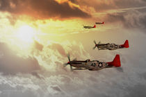 Red Tails von James Biggadike