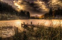 On Golden Loch von Fiona Messenger