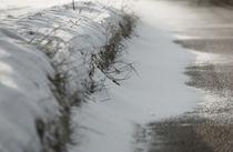 Schneetreiben by Barbara  Schreiber