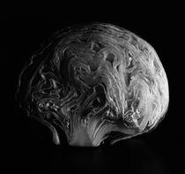 Brain Salad von Nigel  Bangert