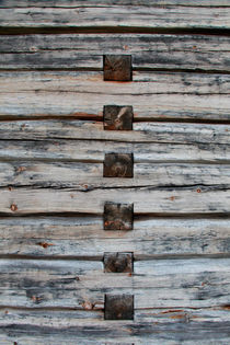 Wall of a log house by Intensivelight Panorama-Edition