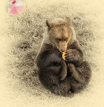 Bear Cub von Fiona Messenger