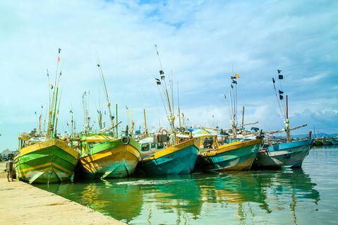 Boats-mirissa