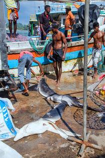 Fischer im Hafen by Gina Koch