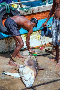 Fischer im Hafen von Gina Koch