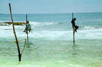 Stangenfischer  in Kogalla auf Sri Lanka by Gina Koch