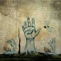 Nice dreams by Josué Vivanco