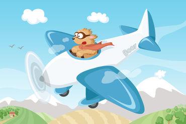 Hund-boo-und-flugzeug