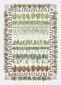 Vegetables by Iann  Eklund Tinbäck