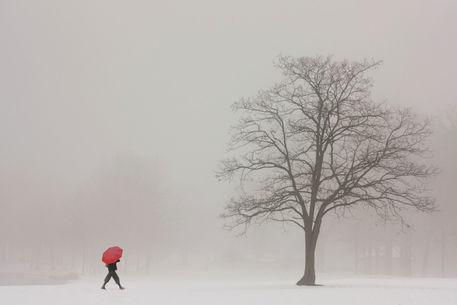 A-shortcut-through-the-snow
