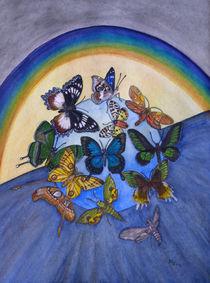 Artenvielfalt der Schmetterlinge(butterflies world wide, biodiversity) von Dagmar Laimgruber