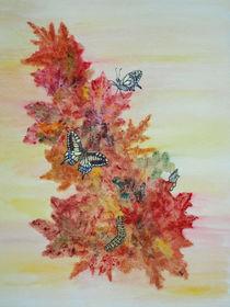 Schmetterlings-Metamorphose und Herbstblätter (metamorphosis of butterflies, autumn leafs, still life) von Dagmar Laimgruber