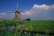Landscape with traditional windmill near Makkum in Friesland, Netherlands by Wolfgang Kaehler