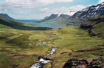 Valley at Seyðisfjörður, Iceland by intothewide