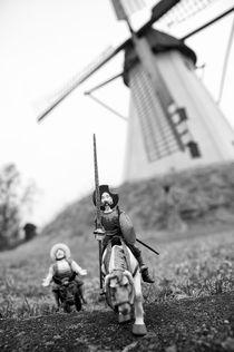 Don Quixote in Großenheerse by Harald Walker