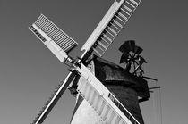 Mill in Eisbergen (1850) by Harald Walker