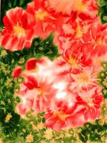 Blühender Cactus von Irina Usova