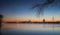 Alster - Hamburg,Germany by Arkadius Ozimek
