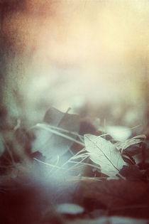 Leaves of Time von Trish Mistric