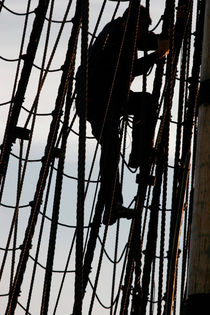 Sailor climbing in the rigging von Intensivelight Panorama-Edition