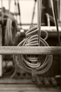 Belaying pins on a tall ship by Intensivelight Panorama-Edition