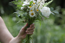 White flower bouquet by Intensivelight Panorama-Edition